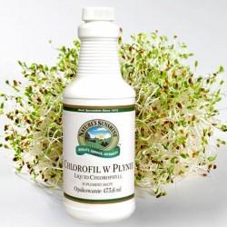 CHLOROFIL W PŁYNIE (Chlorophyll Liquid) - przyspiesza oczyszczanie organizmu, regeneruje i odmładza
