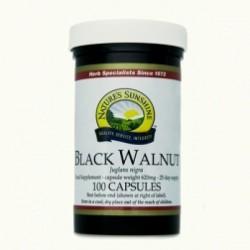 CZARNY ORZECH (black walnut)