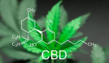 naturalne olejki CBD